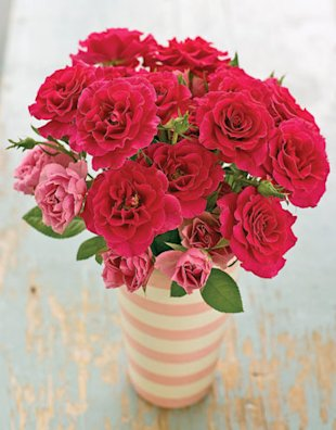 pink flowers in a striped vase