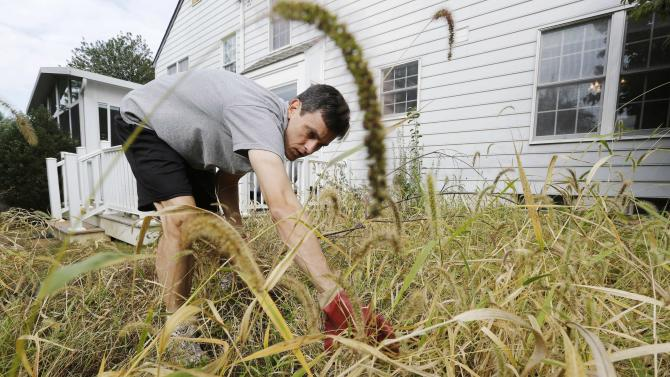 U.S. government statistician Steve Hanway, kept home by the government shutdown, weeds a long neglected garden outside his home in Gathersburg, Maryland