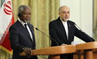 "United Nations and Arab League envoy for the crisis in Syria, Kofi Annan (L) listens to Iranian Minister for Foreign Affairs Ali Akbar Salehi during their joint press conference in Tehran in April 2012. Iran could be a ""heavyweight champion"" of efforts to bring peace to Syria, Iran's UN ambassador said Friday, renewing criticism of his country's exclusion from international talks on the conflict"