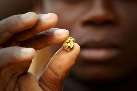 Gold prospector holds a gold nugget between his fingers at a gold mine near the village of Gamina in western Ivory Coast