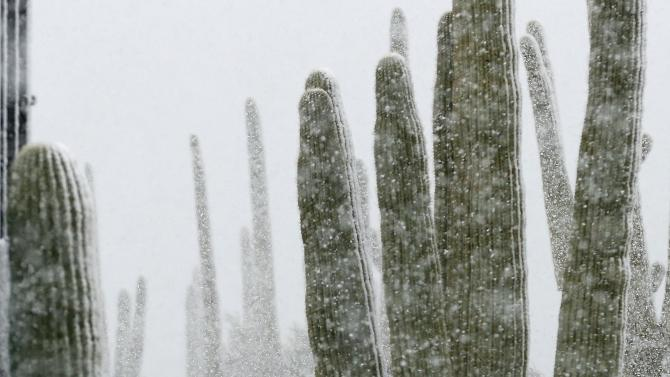 Golf fans make their way off the course as snow falls during the Match Play Championship golf tournament, Wednesday, Feb. 20, 2013, in Marana, Ariz. Play was suspended for the day. (AP Photo/Ross D. Franklin)