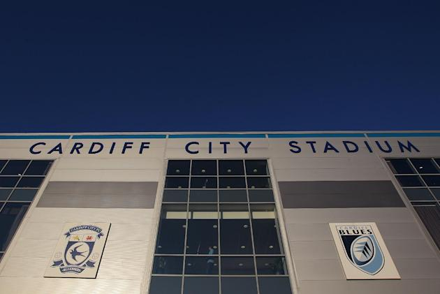 Cardiff City chief executive Alan Whiteley believes the kit and badge changes will help the club develop its brand and expand