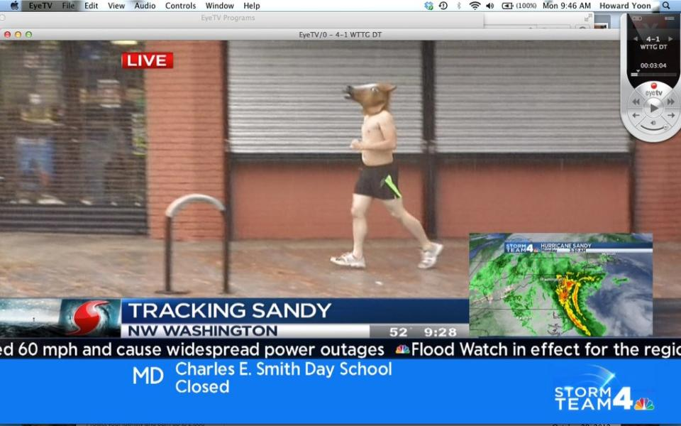 Shirtless Horse-Head-Wearing Jogger Wins Hurricane Sandy