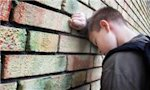 Children who see family violence more likely to harm others