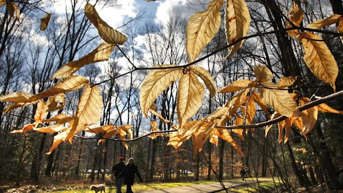 FILE - In this Feb. 5, 2012 file photo, people walk in the South Chagrin Reservation Metropark on a sunny and mild afternoon in Bentleyville, Ohio. A new poll shows Americans' belief in global warming is on the rise, along with temperatures and surprising weather changes. The survey by the University of Michigan and Muhlenberg College says 62 percent of those asked last December think the Earth is getting warmer. That's an increase from 55 percent in the spring of that year. It's the highest percentage in two years. (AP Photo/Amy Sancetta, File)