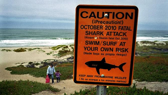 This July 11, 2011 photo shows a shark warning sign along the Surf Beach near Lompoc, Calif. in Santa Barbara County. A shark attack at the Vandenberg Air Force base beach has claimed the life of an experienced 39-year-old surfer, following months of frequent shark sightings along the central California coast. The surfer was killed at the same central California beach where a beachgoer was killed in 2010. (AP Photo/Michael Fernandez)