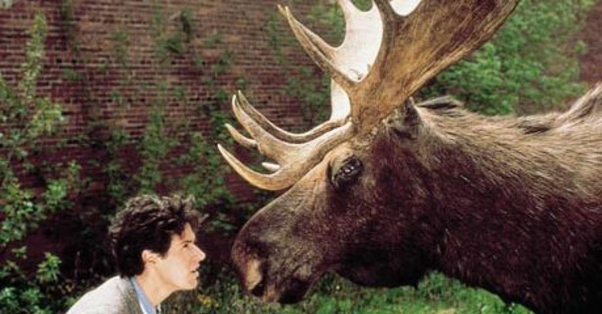 The Cast of 'Northern Exposure': Then and Now
