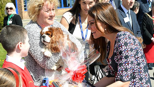 Pregnant Kate Gets Goodies for Royal Pup