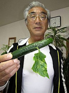 HT fukushima fruit 4 nt 130717 11x15 384 Deformed Vegetables, Fruit Reportedly Pop Up Around Japan Nuclear Plant
