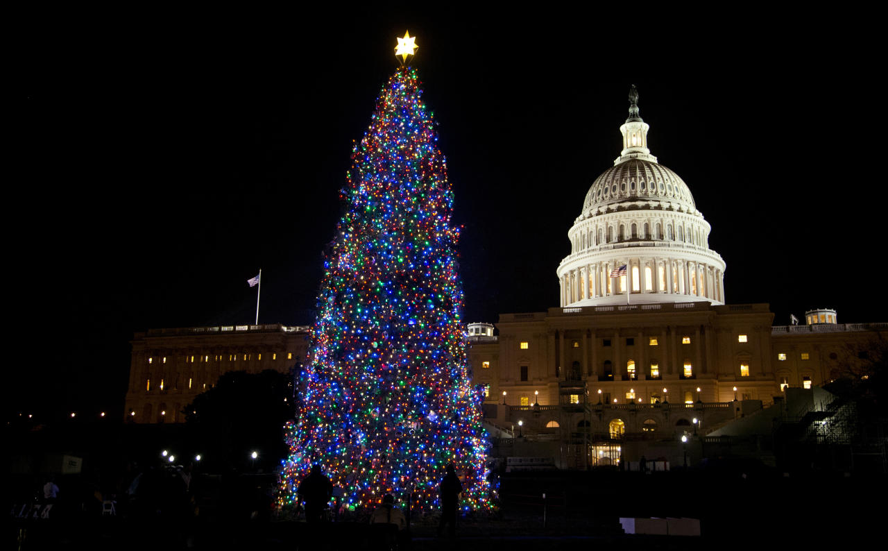 The U.S. Capitol Christmas tree is seen after being lit by House Speaker John Boehner and Ryan Shuster, 17, of Colorado Spring, Colo., not pictured, on the Capitol grounds in Washington, Tuesday, Dec. 4, 2012. The 2012 U.S. Capitol Christmas Tree is an Engelmann spruce from Colorado's White River National Forest. (AP Photo/Manuel Balce Ceneta)