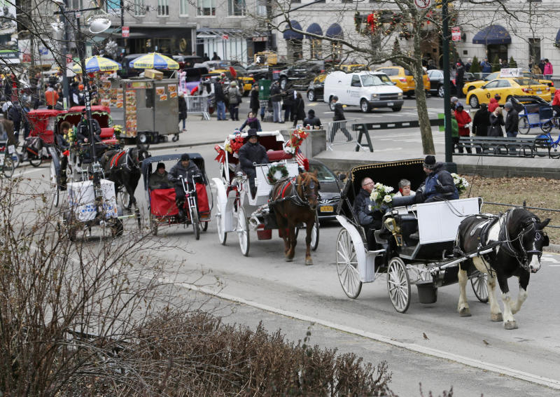 Horses' future uncertain if NYC carriage rides end