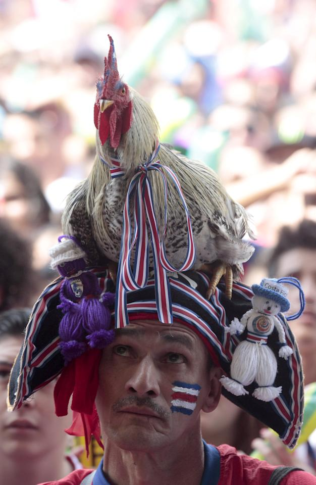 A Costa Rica soccer fan with a rooster in his head watches a live telecast of the World Cup quarterfinal between Costa Rica and Netherlands inside a park in San Jose, Costa Rica, Saturday, July 5, 2014. (AP Photo/Esteban Felix)