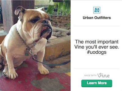 dog vine urban outfitters