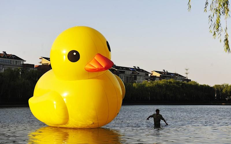 COUNTERFEIT floating duck in China Florentijn Hofman