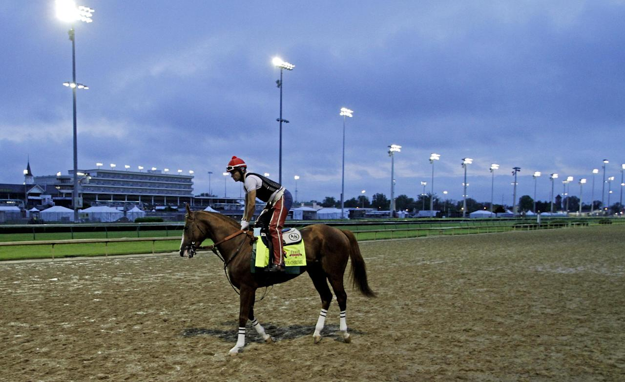 Exercise rider William Delgado takes Kentucky Derby hopeful California Chrome for a morning workout at Churchill Downs Wednesday, April 30, 2014, in Louisville, Ky. (AP Photo/Garry Jones)
