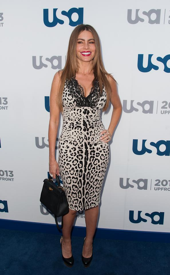 NEW YORK, NY - MAY 16:  Sofia Vergara attends the  USA Network 2013 Upfront Event at Pier 36 on May 16, 2013 in New York City.  (Photo by Dave Kotinsky/Getty Images)