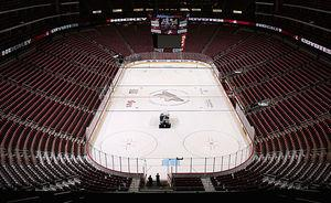 Future of Coyotes in Phoenix 'not set in stone'
