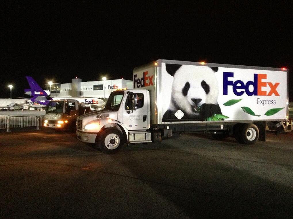 "FedEx Panda Express truck awaiting the arrival of the giant pandas at the Toronto FedEx ramp. <a class=""twitter-timeline-link"" dir=""ltr"" href=""http://t.co/RnsQU5O5dp"" data-pre-embedded=""true"">pic.twitter.com/RnsQU5O5dp</a>"