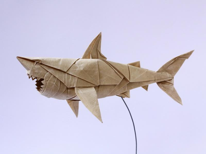 Origami art - Great White Shark. My old design, refolded for the Ultimate Origami Convention 2012 in Lyon, France.