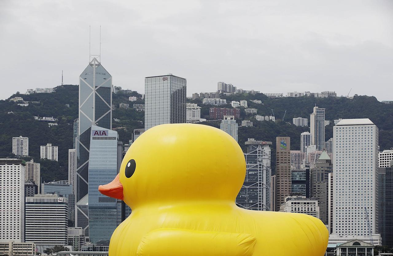 "HONG KONG - MAY 02:  Dutch conceptual artist, Florentijin Hofman's Floating duck sculpture called ""Spreading Joy Around the World"", is moved into Victoria Harbour on May 2, 2013 in Hong Kong. The ""Rubber Duck"", which is 16.5 meters high, will be in Hong Kong from May 2 to June 9. Since 2007, ""Rubber Duck"" has been traveling to 10 countries and 12 cities. (Photo by Jessica Hromas/Getty Images)"