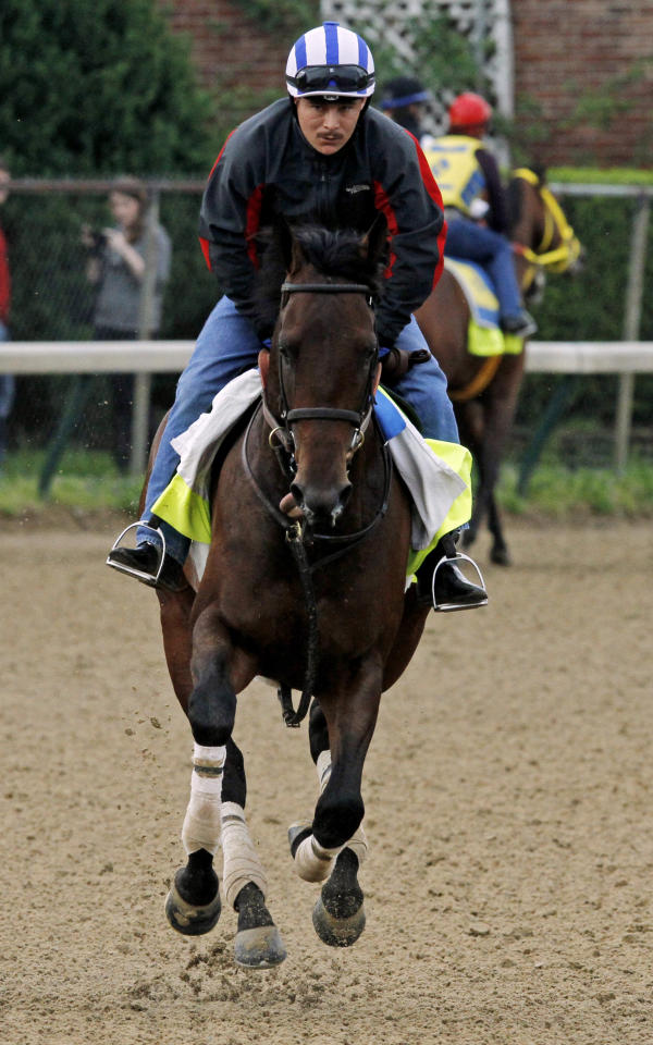 Exercise rider Faustino Aguilar takes Kentucky Derby hopeful Medal Count for a morning workout at Churchill Downs Tuesday, April 29, 2014, in Louisville, Ky. (AP Photo/Garry Jones)