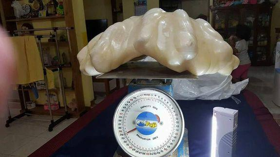 Is This The World's Largest Pearl?