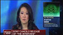 Sony's real cost still to come: Bibb