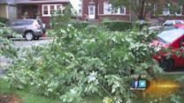 Storm cleanup keeps Chicago area busy