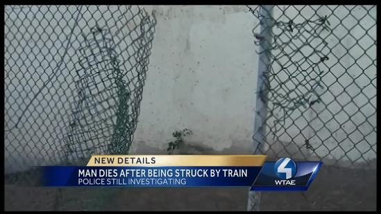 Man hit by train on South Side dies