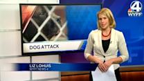Dash cam video released in dog attack
