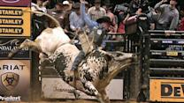 Pro bull riders event marks 20th year at NYC event