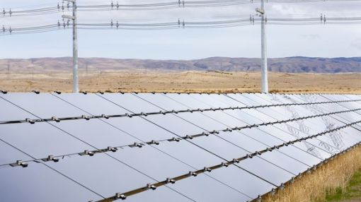 Why Humana, Cato, and First Solar Slumped Today