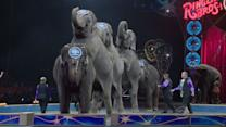 Ringling Bros. ends iconic tradition