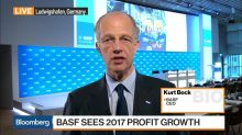 BASF's Profit Outlook Weighed Down by Gloomy European View