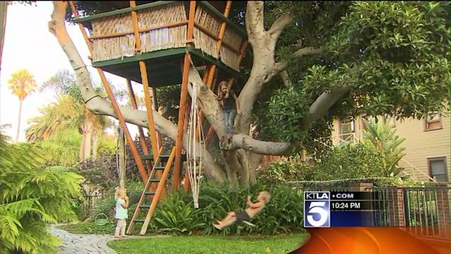 McMansion Proponents Suspected for Targeting Beloved Tree House