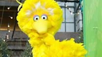 Romney wants to defund Big Bird, ruffles feathers