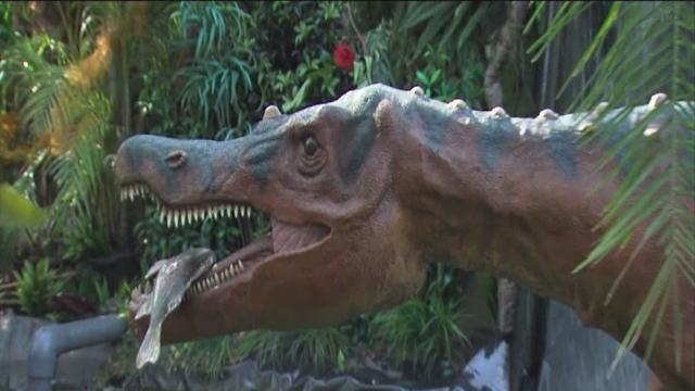 ABC Action News: Weekend Edition Lowry Park Zoo Dinoquest