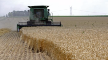 One of the world's largest commodities traders is reportedly in talks to make a big entry into America's agriculture market