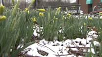 Winter weather during the Spring