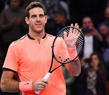 Del Potro claims first title for 33 months