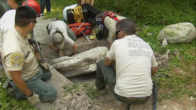 Search-and-rescue works to recover rare whale fossil