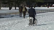 Japan snow disrupts transport