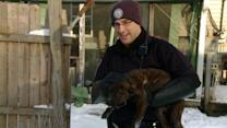 Animal Control Officers Rescue Pups from Freezing Temperatures