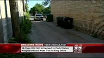 Girl, 14, Raped In South Side Alley