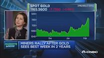 Gold is a portfolio hedge: Head of investments