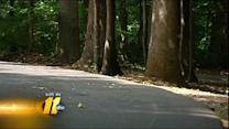 Child charged in greenway flashing incident