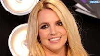 Britney Spears Spent $80,000 On Hair, Makeup And Clothes--and More Than $31,000 On Dogs!--Last Year