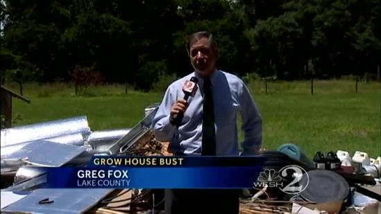 More than 100 marijuana plants removed from home