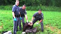 David Sweat's Alleged Hospital Confession