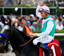 Horse racing: Arrogate becomes biggest-earning horse with World Cup win